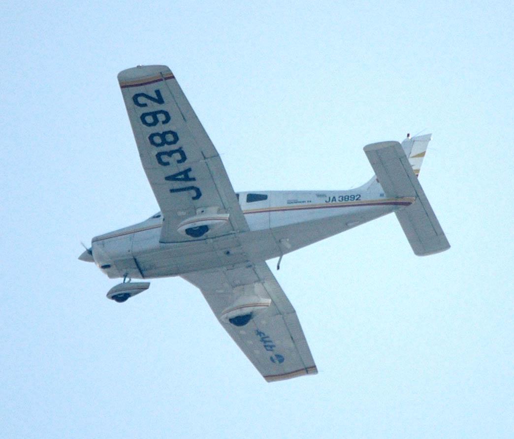 Piper100320314